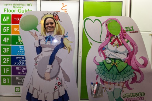 Welcome to Akihabara!  (1 of 1)
